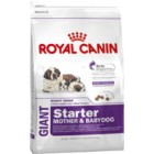 ROYAL CANIN GIANT STARTED