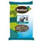 BRADIUM PIPES PER LLOROS