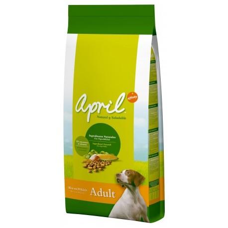 AFFINITY APRIL DOG CROC ADULT